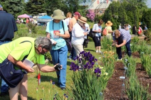 To become an accredited garden judge